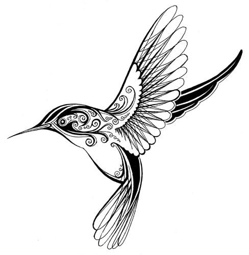 Line Drawing Hummingbird : Tattoo id ntity crisis