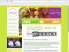Hauser Diet Website Design